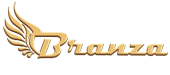 Branza Web Design & Development Services